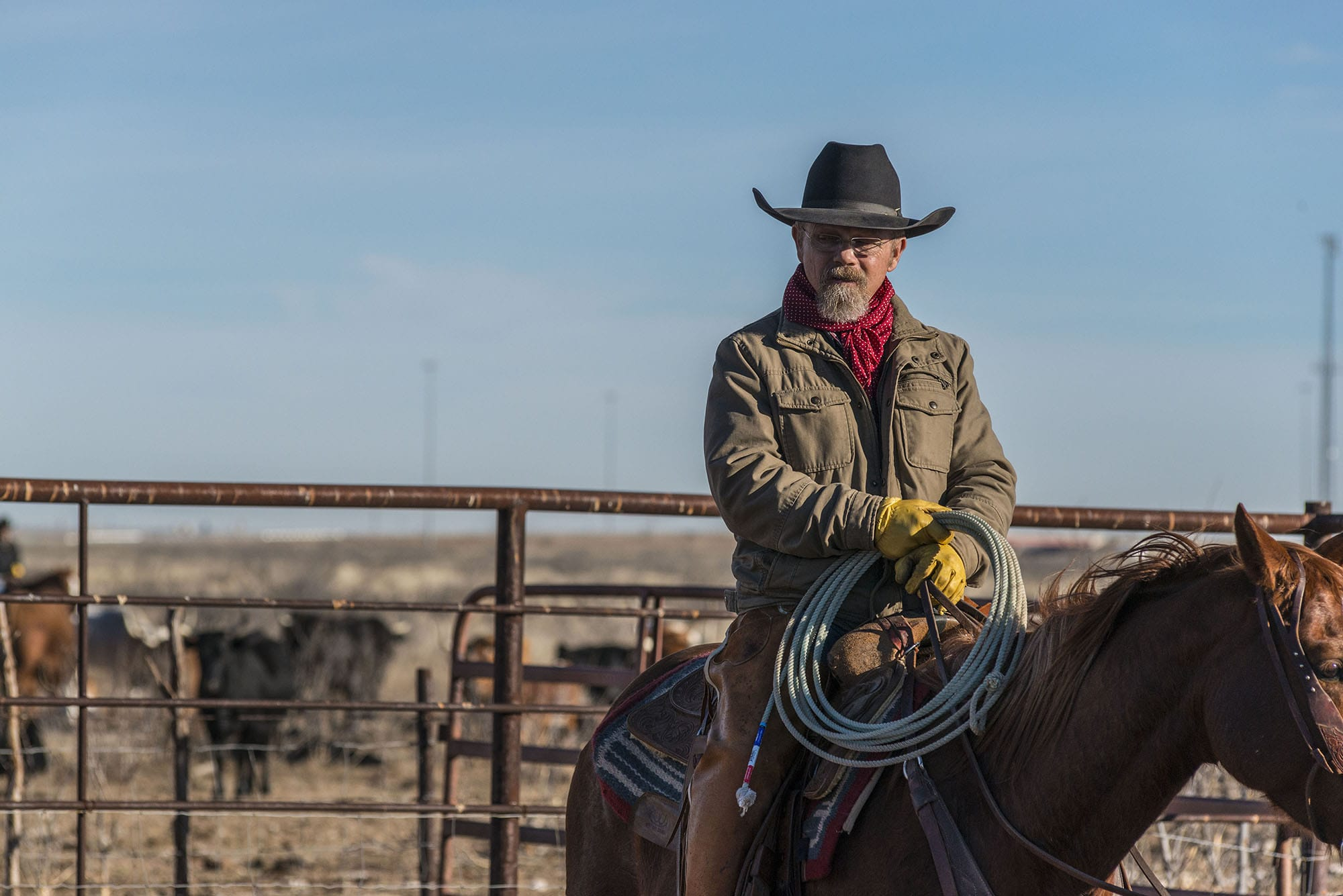 west texas cowboy